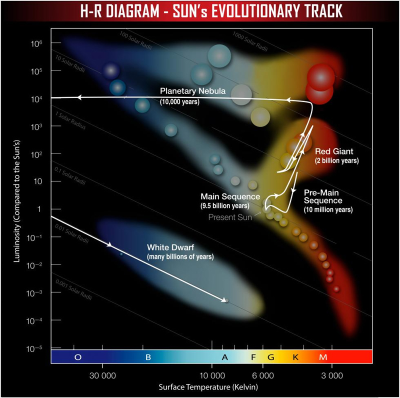 Evolutionary Track