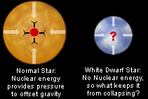 Normal Star: Nulcear energy provides pressure to offset gravity / White Dwarf Star: No Nuclear energy, so what keeps it from collapsing?