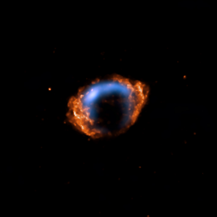 Radio and X-ray Image of the Youngest Known Supernova in Our Galaxy