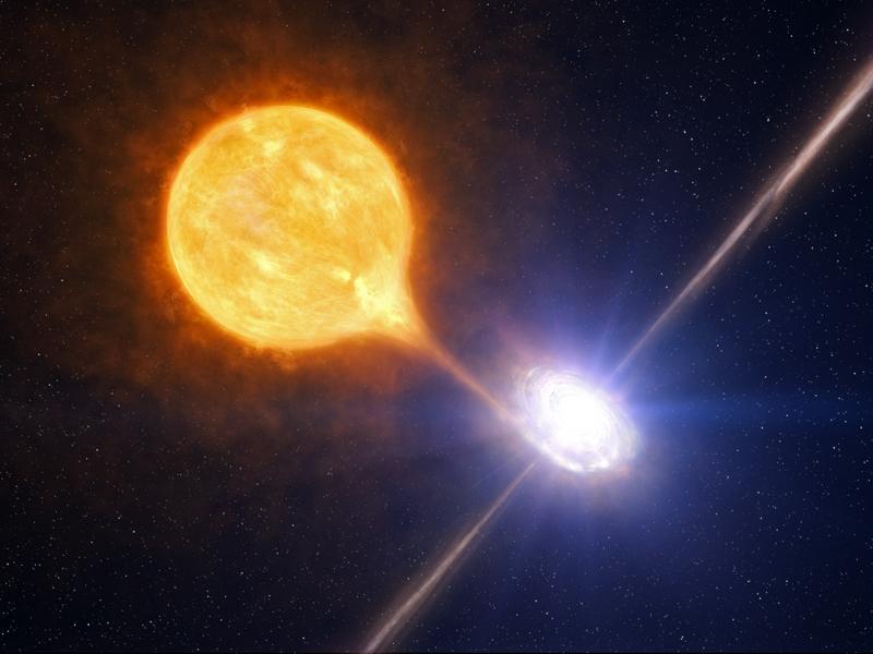 http://chandra.harvard.edu/photo/2010/ngc7793/stellar_bh_ill.jpg