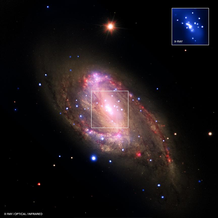 Chandra :: Photo Album :: NGC ...