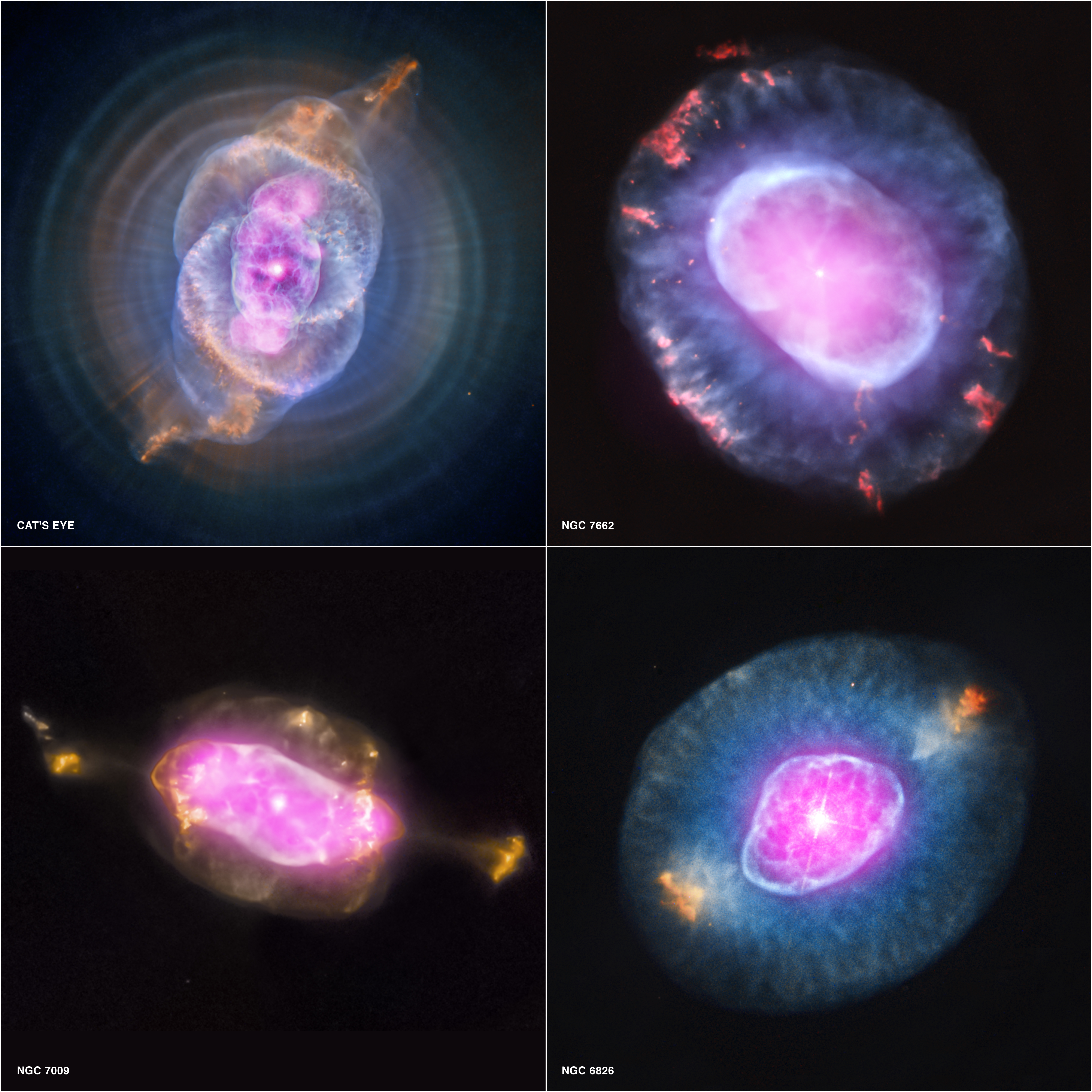 Chandra :: Photo Album :: Planetary Nebula Gallery :: October 10, 2012