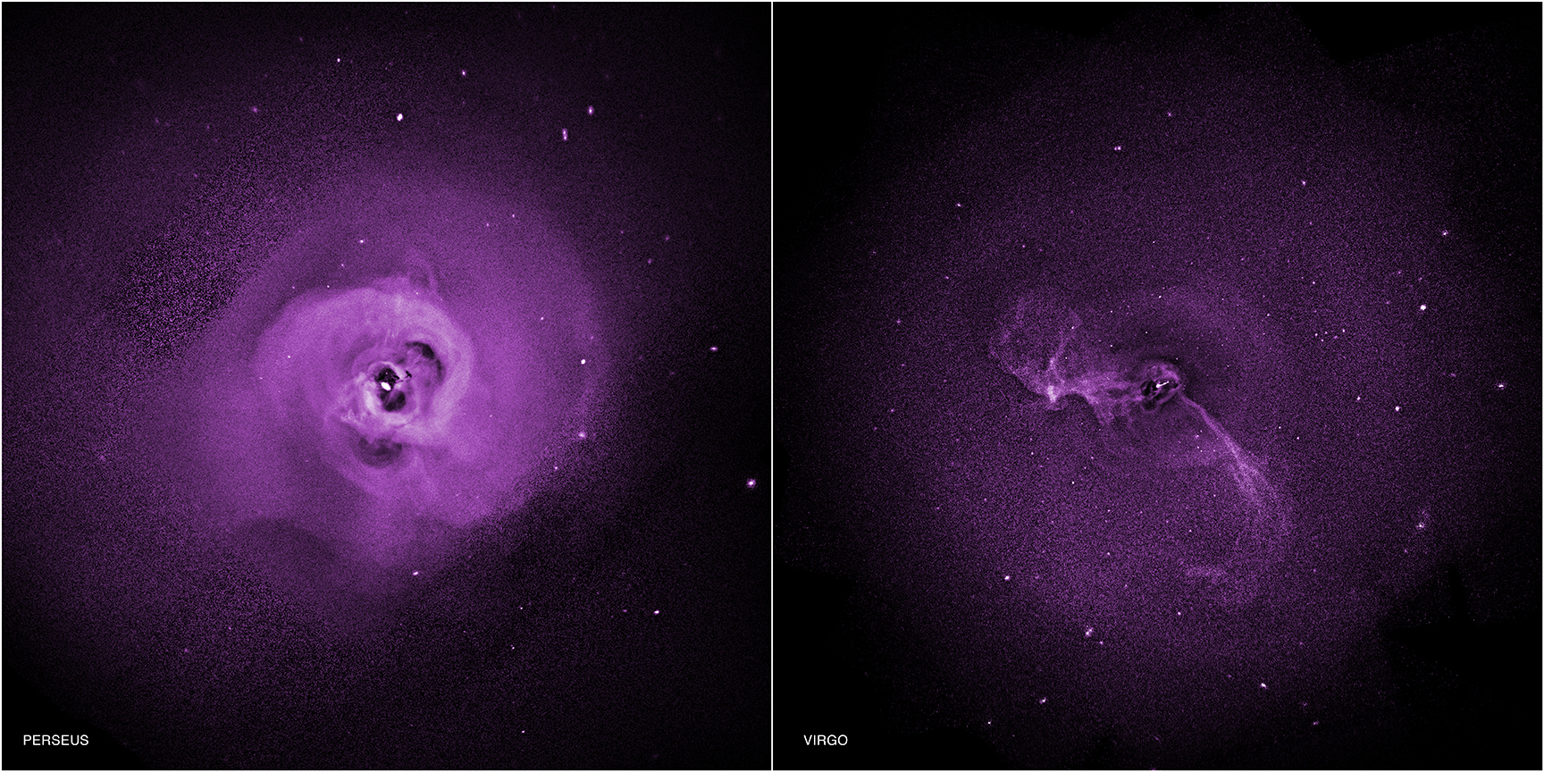 Chandra :: Photo Album :: Perseus Cluster and Virgo ...