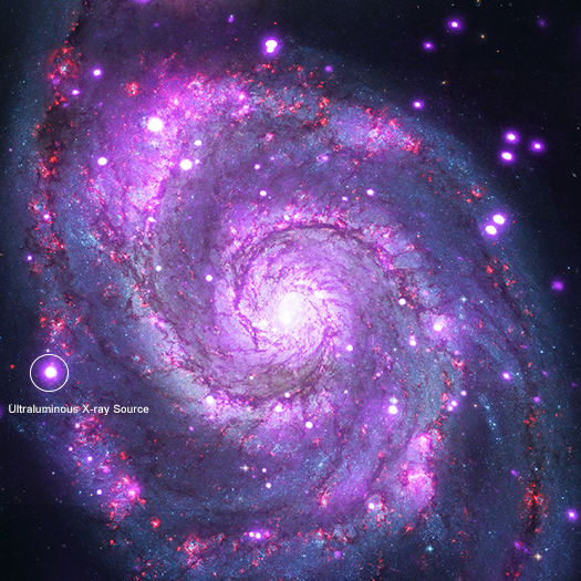 09-CHANDRA - PICTURE OF THE WEEK - FEBRUAR 2018. M51_525