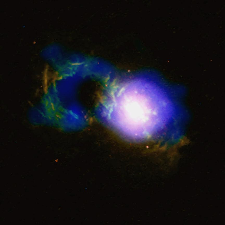 una galassia per te Teacup